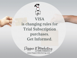 Pepper it marketing visa changing rules