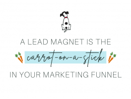 Pepper It Marketing A lead magnet is the carrot-on-the-stick for your marketing funnels